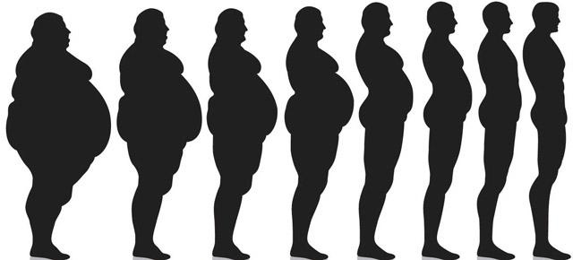еволюція схуднення